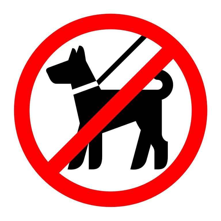 вход с собаками запрещен картинки